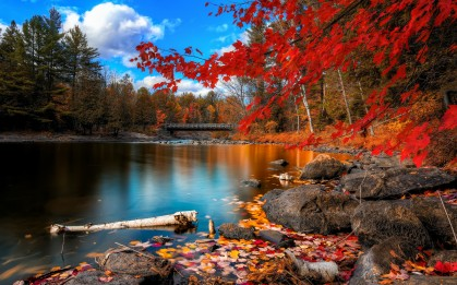 fall river and bridge pic