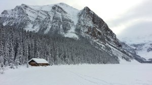 Lake Louise - Jan 13'
