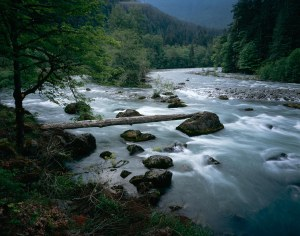 Elwha River - Olympic NP