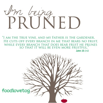 Pruned by God is PAINFUL! | RoadTrip Parenting