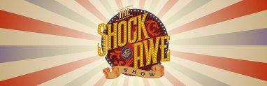 shock and awe banner art